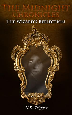 The Wizard's Reflection